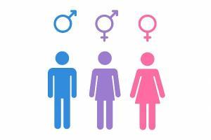 Cum a luat nastere ideea Legii identitatii de gen? Initiatorul proiectului s-a inspirat din SUA: Baietii puteau folosi toaleta fetelor, daca afirmau ca se simt fete