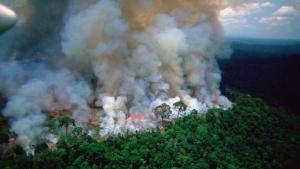 Plamanii Terrei ARD. Padurea Amazoniana, care produce 20% din Oxigen, este mistuita de flacari
