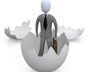 Start in afaceri: Procedura de implementare a Programului national multianual de infiintare si dezvoltare de incubatoare tehnologice si de afaceri