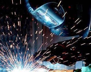 Ministrul Economiei: Pentru intreaga economie europeana este foarte important sa se evite relocarea unitatilor de productie din diferite sectoare industriale