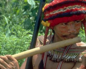 Trofee magice: Incursiune in trecutul indienilor amazonieni