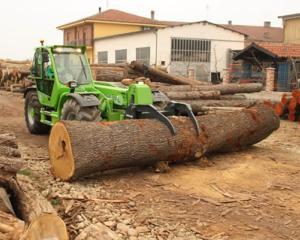 Doleantele reprezentantilor Industriei lemnului, mobilei si hartiei, facute publice la consultarile de la Ministerul Economiei