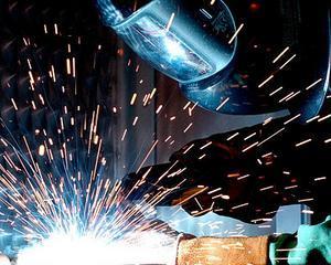 Vosganian: Uniunea Europeana risca sa ramana fara industrie