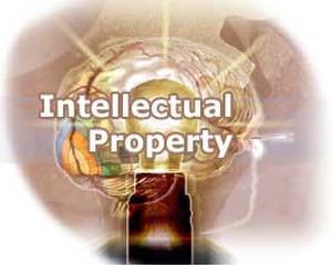 Drepturile de proprietate intelectuala, un ban in plus pentru companii