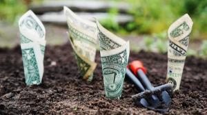 Investitorii din Romania isi pot plasa banii in companii sustenabile