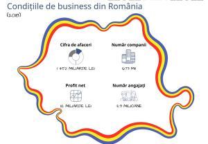 In ultimii 10 ani de business, cifra de afaceri a companiilor din Romania a crescut cu 71%