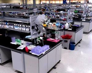 Ebola in SUA: Inca o persoana a fost internata