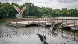 Traseul turistic al lacurilor Floreasca-Tei poate fi parcurs cu bicicleta, pietonal si nautic