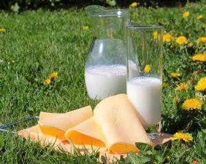 APIA: Cererile pentru ajutorul financiar in sectorul laptelui se depun pana la 6 iunie