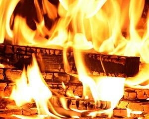 Uniunea Europeana se bazeaza pe o sursa banala de energie: lemnul