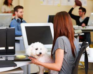 Ce costuri ascunde un loc nou de munca?