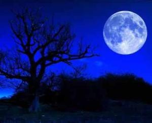 Luna albastra precum situatia