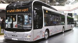 Transportul public gratuit a ramas in pana