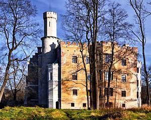 Polonia cauta investitori pentru a cumpara si repara sute de conace mari aflate in ruine
