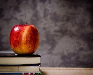 18 milioane de euro de la UE pentru ca elevii sa primeasca lapte, fructe si legume la scoala