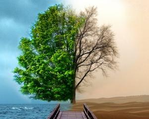 Barack Obama: Vom lua masuri dure in lupta impotriva incalzirii climatice