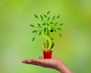 Cand Statul nu se pricepe, investitorii platesc