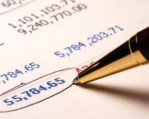 "Mirela Serban, Managing Partner R&M Audit Contabilitate: 2014, un an de ""supravietuire"""