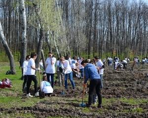Enel si MaiMultVerde au plantat 4.000 de copaci in Parcul Natural Comana