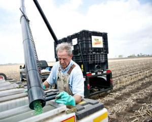 Monsanto: Cifra de afaceri a companiei se afla pe un trend ascendent