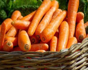 Productiile de fructe si legume, mai mici cu peste 20% in acest an