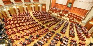 Senator PNL, despre motiunea de cenzura: Nu ne putem bate joc de propriul Guvern
