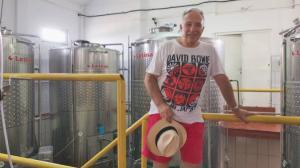 Profit de trei ori mai mare pentru producatorul de vin detinut de familia Isarescu