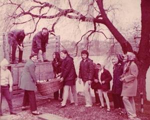 Amintiri din comunism. Muncile agricole (VII)