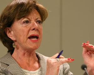 Neelie Kroes solicita eliminarea taxelor de roaming