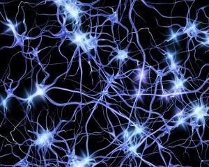 Savantii au dezvoltat o metoda prin care pot modifica gene in creierul uman