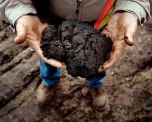 Analizele Manager.ro: Nisipurile bituminoase asigura rezerve promitatoare de petrol
