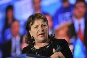 Norica Nicolai crede ca alegerile au fost fraudate: ALDE are 15%, nu 4%