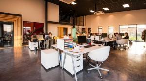 Cum vad generatiile Z, Y si X mediul de lucru in birourile din Bucuresti