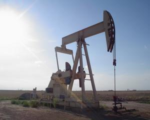 Impozitarea energiei - spre o noua paradigma fiscala?