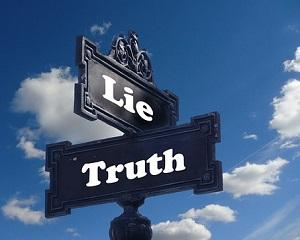 Lia Olguta Vasilescu si minciuna de partid