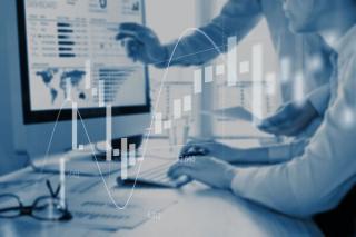 Platforma informatica dedicata schimbului valutar pentru companii