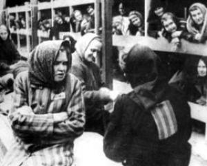 ONU: Ungaria si-a cerut scuze pentru Holocaust