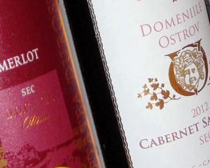 Afacerile unui producator de vin din Romania, avans de peste 20%