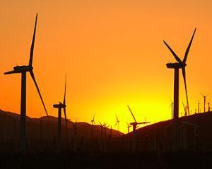 Guvernul inchide curentul energiei eoliene