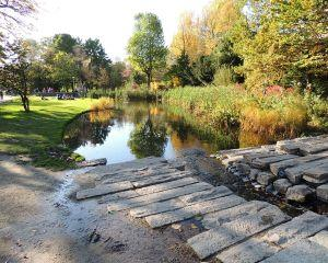 Vesti bune - Se infiinteaza Parcul Natural Vacaresti in capitala