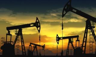 OPEC: Cererea globala de petrol va creste spectaculos in 2021