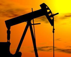 NIS cauta petrol in Romania