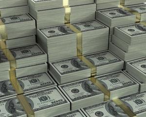Azi la BVB un dolar de pui, maine el va face inzecit pui?
