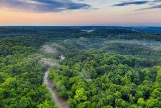 Plamanul Terrei a devenit sursa de poluare. Padurea amazoniana emite mai mult CO2 decat absoarbe