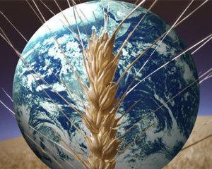 OTP Bank a lansat pachetul AgriBusiness
