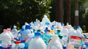 WWF Romania si-a propus eliminarea plasticului din Delta Dunarii