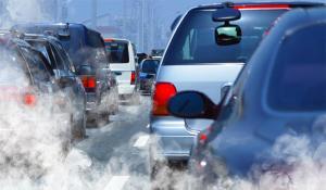 Gabriela Firea vrea un program de tipul VINIETA OXIGEN la nivel NATIONAL: Poluatorul plateste
