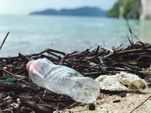 Se apropie ziua in care vom infasura Pamantul intr-o punga de plastic si-l vom arunca la gunoi, cu noi cu tot
