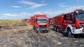Amenda de 115.000 lei pentru poluarea aerului provocata de incendiul de la fosta ferma de porci din Peris