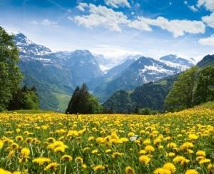 Agricultorii din zona de munte pot opta pentru inscriptionarea distincta